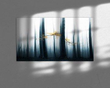 Speulder Wald von Lars van de Goor