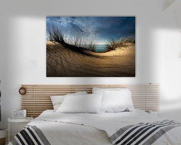 Dunes........ van Wim Schuurmans