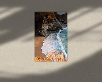 McWay Falls, Big Sur von Wim Slootweg