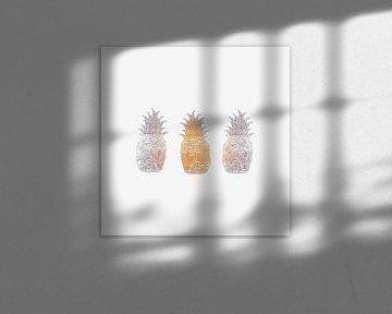 Pineapple. Ananas. von Mr and Mrs Quirynen