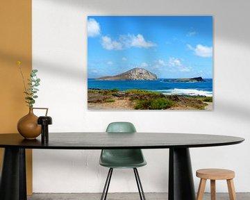 Rabbit Island auf Hawaii sur Janina Ballali