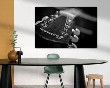 Eastman gitaar van Annemiek van Eeden