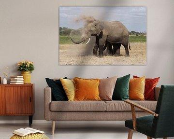 olifant neemt stofbadje von Daisy Janssens