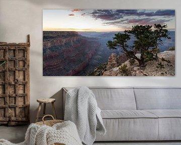 Wunderbare Grand Canyon Sunset (2) von Hans Brinkel