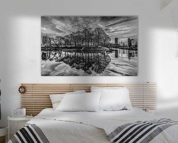Dwinger Oldehove van Harrie Muis