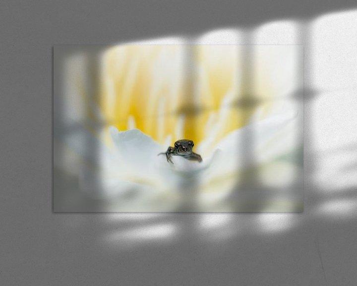 Impression: Waterleliebad sur Monique Simons