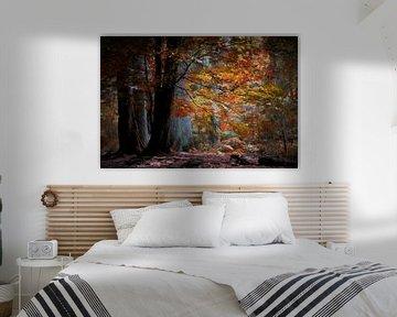 Kleurrijk Herfsttafereel van Tejo Coen
