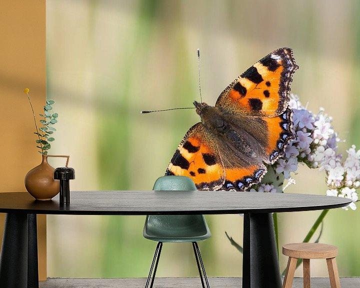 Sfeerimpressie behang: Kleine vos vlinder van Hilda Weges