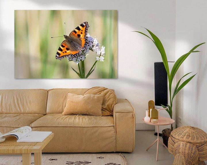 Sfeerimpressie: Kleine vos vlinder van Hilda Weges