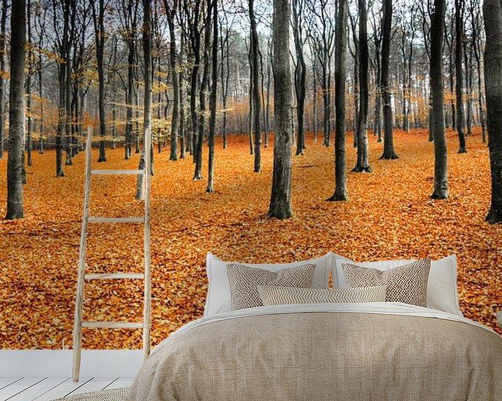 Sfeerimpressie behang: Orange Leaves Landscape,  Hoog Soeren, Veluwe van Remco Bosshard