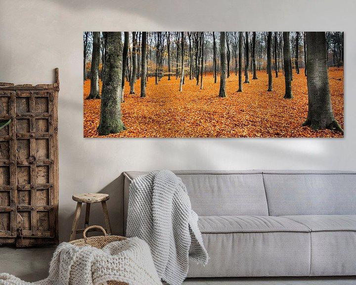 Sfeerimpressie: Orange Leaves Landscape,  Hoog Soeren, Veluwe van Remco Bosshard