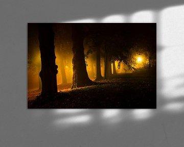 De donkere kant van Tvurk Photography