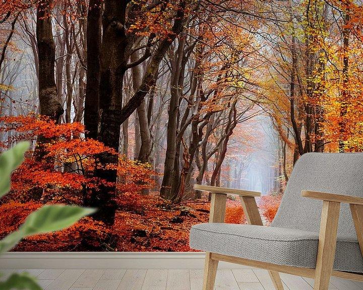 Sfeerimpressie behang: Diep in Neldoreth van Tvurk Photography