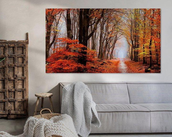 Sfeerimpressie: Diep in Neldoreth van Tvurk Photography