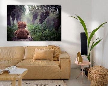 Teddy in the mist van Vincent van Dam