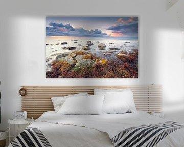 Am Kap Arkona (Wittow / Rügen) van Dirk Wiemer