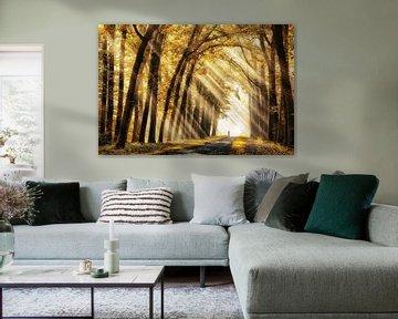 Goldener Glanz von Lars van de Goor