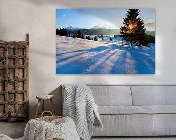 Winter dreams van Olha Rohulya