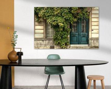 De deur in 't groen.. von Ellen Driesse
