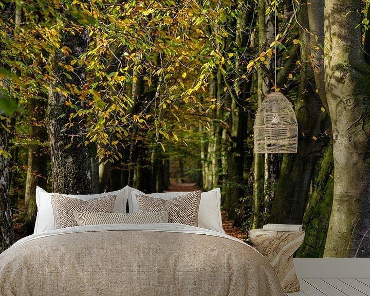 Sfeerimpressie behang: Herfstsfeer in het bos van Bart van Dinten