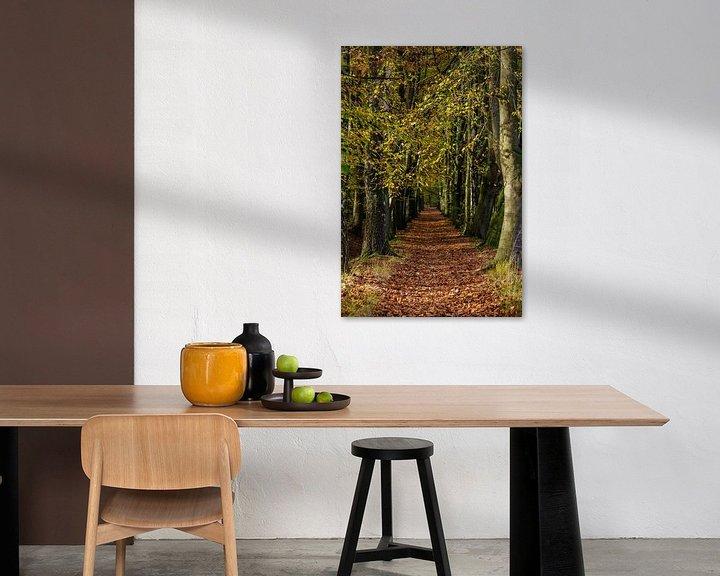 Sfeerimpressie: Herfstsfeer in het bos van Bart van Dinten