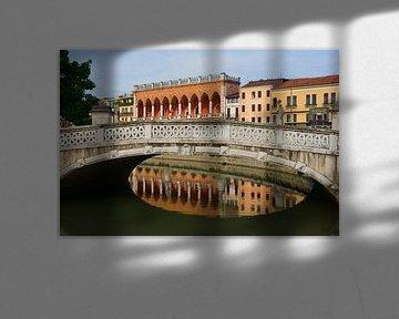 Brug in Padua von Michel van Kooten