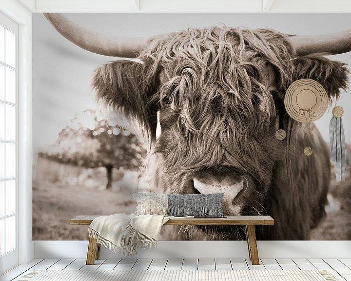 Beispiel fototapete: Schottischer Highlander von Jo Beerens