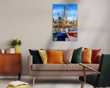Haven van Sanary-sur-Mer, Var, Frankrijk van 7Horses Photography