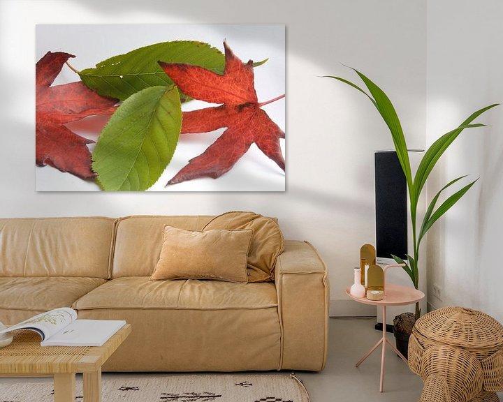 Sfeerimpressie: Minimalistische herfst van Bas Smit
