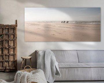 Horses on the Beach von Alex Hiemstra