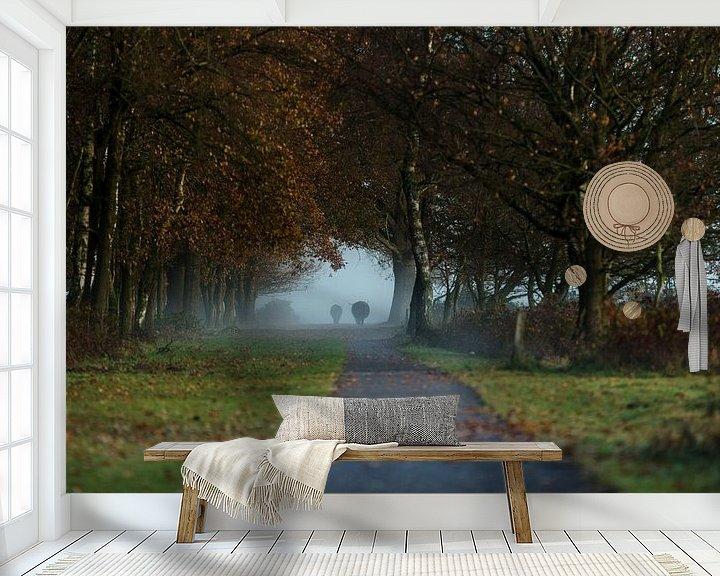 Sfeerimpressie behang: Hooglanders in ochtendnevel van de Maashorst van Hans Koster