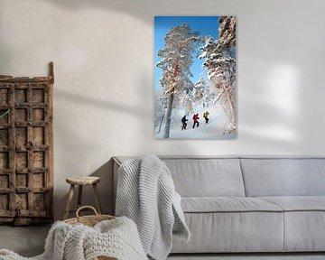 Schneeschuhwandern in Finnland sur Menno Boermans