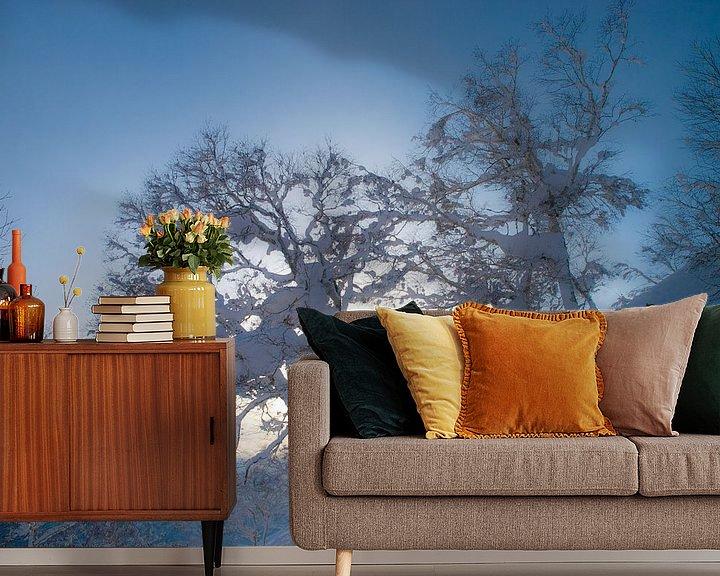 Impression: Winterwonderland Niseko sur Menno Boermans