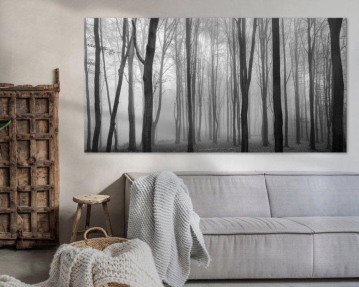 Sfeerimpressie: Dark Woods van Philippe Velghe