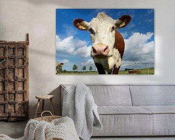 Bruin-witte koe von Elsa Datema