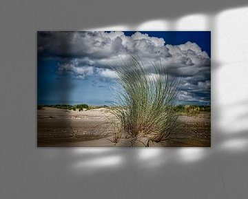 wolken boven de duinen met een closeup van stuk helmgras sur eric van der eijk
