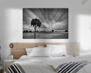 Eenzame boom op een strekdam langs de Lek (Zwart-wit) van John Verbruggen