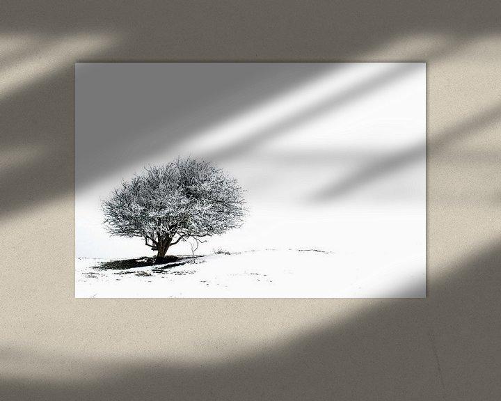 Beispiel: Einsamer Baum im Schnee 2 von Jacqueline Lodder