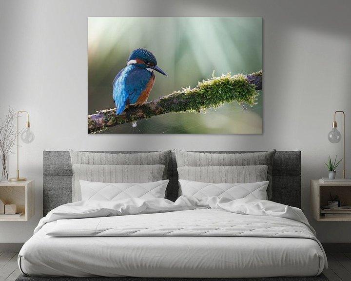 Sfeerimpressie: Ijsvogel van Pim Leijen