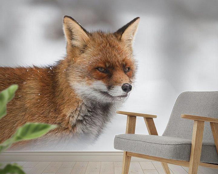 Sfeerimpressie behang: Red fox van Pim Leijen