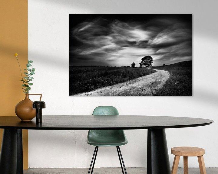 Beispiel: Slingerend weggetje op de dijk  met boom (zwart-wit) von John Verbruggen