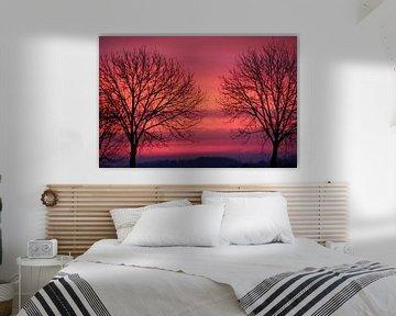Zonsopgang in roze, rood, paars en oranje van Wilma Overwijn