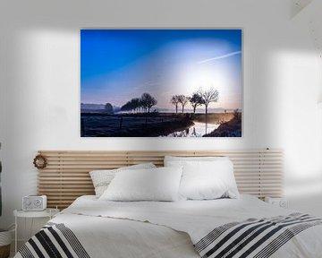 Koude zon van Wouter Cornelissen