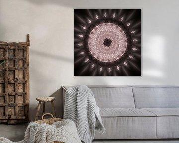 Mandala - Illusion van Dagmar Marina