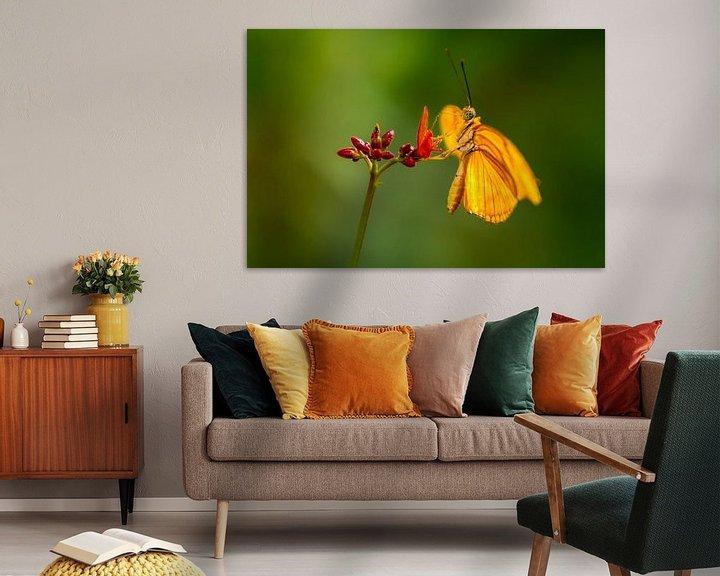 Beispiel: De oranje vlinder von Ralf Linckens