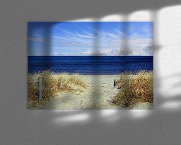 Weg zum Strand van Ostsee Bilder