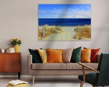 Weg zum Strand von Ostsee Bilder