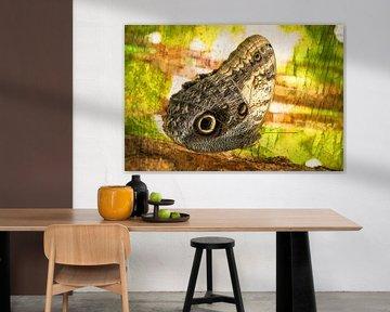 rustende vlinder in het  regenwoud van Rietje Bulthuis