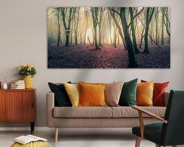 Panorama forest van Joost Lagerweij