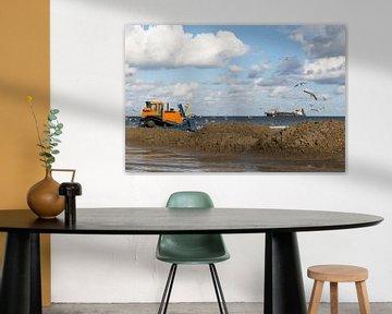 Kustversterking / landaanwinning in Nederland van Miranda van Hulst